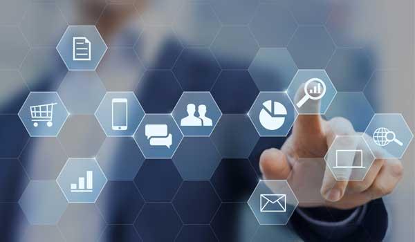Pintus.net: servizi digitali per le aziende